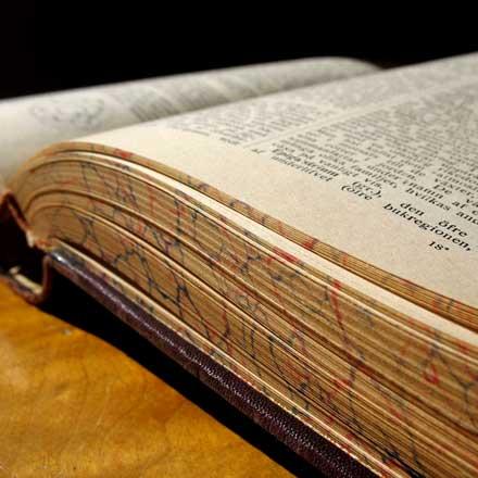Hildegard von Bingen - Literatur