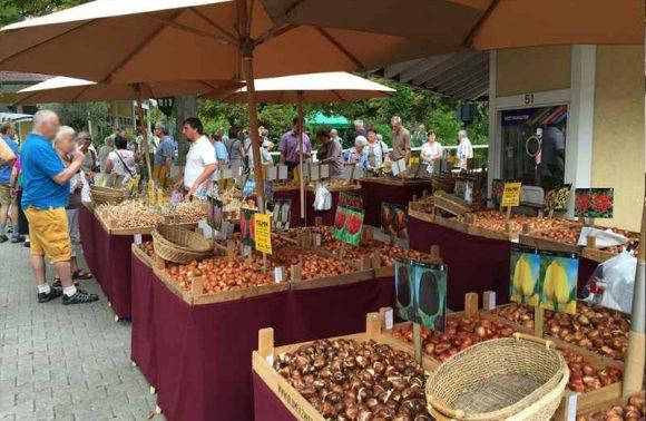Stände auf Gartenmesse in Iffezheim